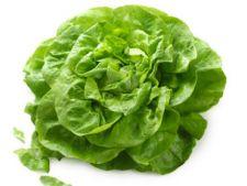 Beneficiile consumului de salata verde