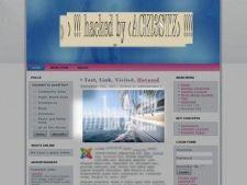 Un hacker austriac de 15 ani a