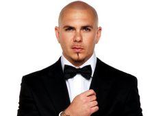 Pitbull interpreteaza tema principala a filmului