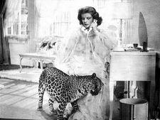 Filme celebre care au inspirat tendintele de moda
