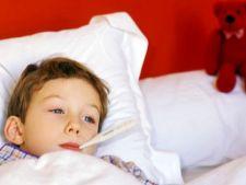 Tratarea febrei la copii. Remedii naturiste