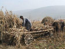 Studiu: Trei sferturi din populatia de la sate traieste in conditii precare