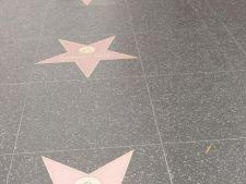 Afla numele vedetelor care vor primi o stea pe Walk of Fame in 2013!