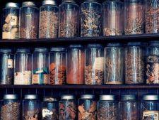 Depozitarea plantelor medicinale