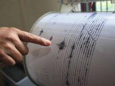 Un cutremur de 4,3 grade s-a produs joi in Vrancea
