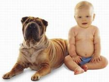 Studiu: Animalele de companie ii fac pe copii mai sanatosi
