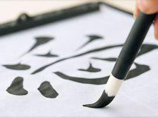 Recomandare de weekend: Expozitie de caligrafie japoneza la Muzeul Taranului Roman