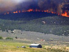 Incendiul din Harghita a ars aproape 75 de hectare de pasune si padure