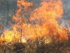 Incendii de vegetatie in 10 judete din Romania