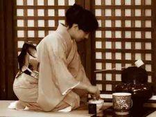 Obiective turistice din Japonia care au dezamagit turistii
