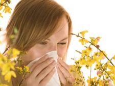 Ce trebuie sa stii despre alergiile de toamna