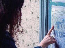 ANOFM: Peste 7.800 de joburi sunt vacante in Romania in perioada 6-12 septembrie 2012