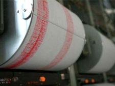 Doua cutremure au avut loc duminica seara in Vrancea
