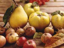 Fructele de toamna in meniul tau zilnic