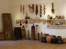 Zilele Muzeului Taranului 2012