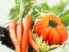 Nutrienti care stimuleaza sistemul imunitar