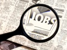 Angajari in institutiile publice: se cauta directori si sefi de serviciu