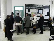Peste 3.900 de joburi sunt oferite la Bursa locurilor de munca pentru absolventi
