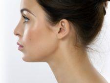 Remedii naturale pentru infectia urechii