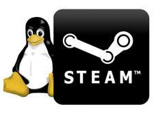 Afla care sunt primele jocuri pregatite de Steam pentru Linux