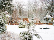 Cum sa iti pregatesti curtea si gradina pentru iarna