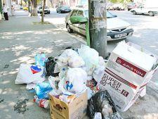Amenzi de 500 de lei pentru cei care arunca gunoaie pe jos in sectorul 3
