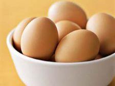 4 lucruri de baza despre oua