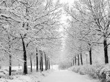Iarna vine la sfarsitul lunii noiembrie