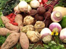 Ce beneficii are consumul de radacinoase