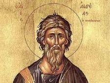 Pe 30 noiembrie, de Sfantul Andrei, romaniii stau acasa