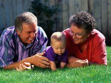 Afla cu cine se inteleg cel mai bine bunicii tai in functie de zodia lor