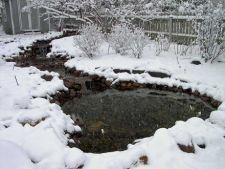 Pregateste iazul din gradina pentru iarna