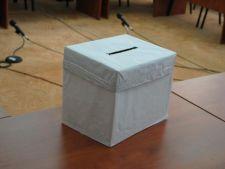 Alegeri parlamentare 2012: Fara urne speciale la sectiile de votare din strainatate
