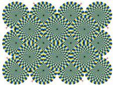 iluzii1