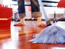 Ustensile practice pentru curatenia de sarbatori
