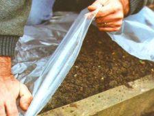 Compostul din gradina organica: tu cum il menajezi pe timp de iarna?
