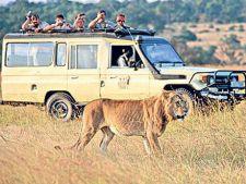 De ce ai nevoie intr-o excursie safari