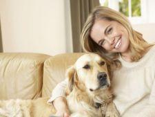Rase de caini pentru femeile singure: 3 criterii in alegerea unui prieten necuvantator