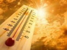 Anul 2012, printre cei mai caldurosi din Romania! 2013 se anunta cel mai fierbinte la nivel global!
