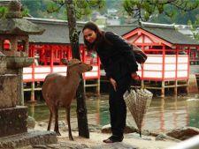 Vacanta in Japonia: 4 sfaturi pretioase pentru familia cu copii