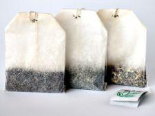 Pliculetele de ceai folosite sunt mina de aur pentru plante: 3 utilizari interesante