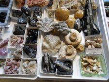 Iarna Cristalelor la Muzeul de Geologie