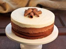 Prajitura cu trei tipuri de mousse de ciocolata