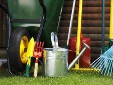 De ce este important sa dezinfectezi uneltele pentru gradinarit la sfarsitul iernii?