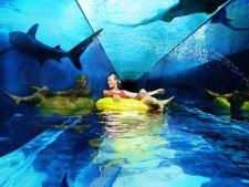 Cele mai impresionante parcuri acvatice din Europa
