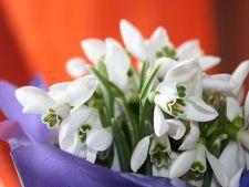 Cadouri de Dragobete inspirate din traditiile sarbatorii romanesti