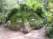 Sculpturi uimitoare in iarba