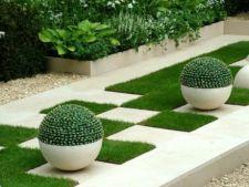 Designul geometric, o idee isteata pentru amenajarea gradinii si a curtii