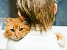 Cum sa alegi un animal de companie potrivit pentru familia ta