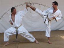 Unde poti practica arte martiale in orasul tau